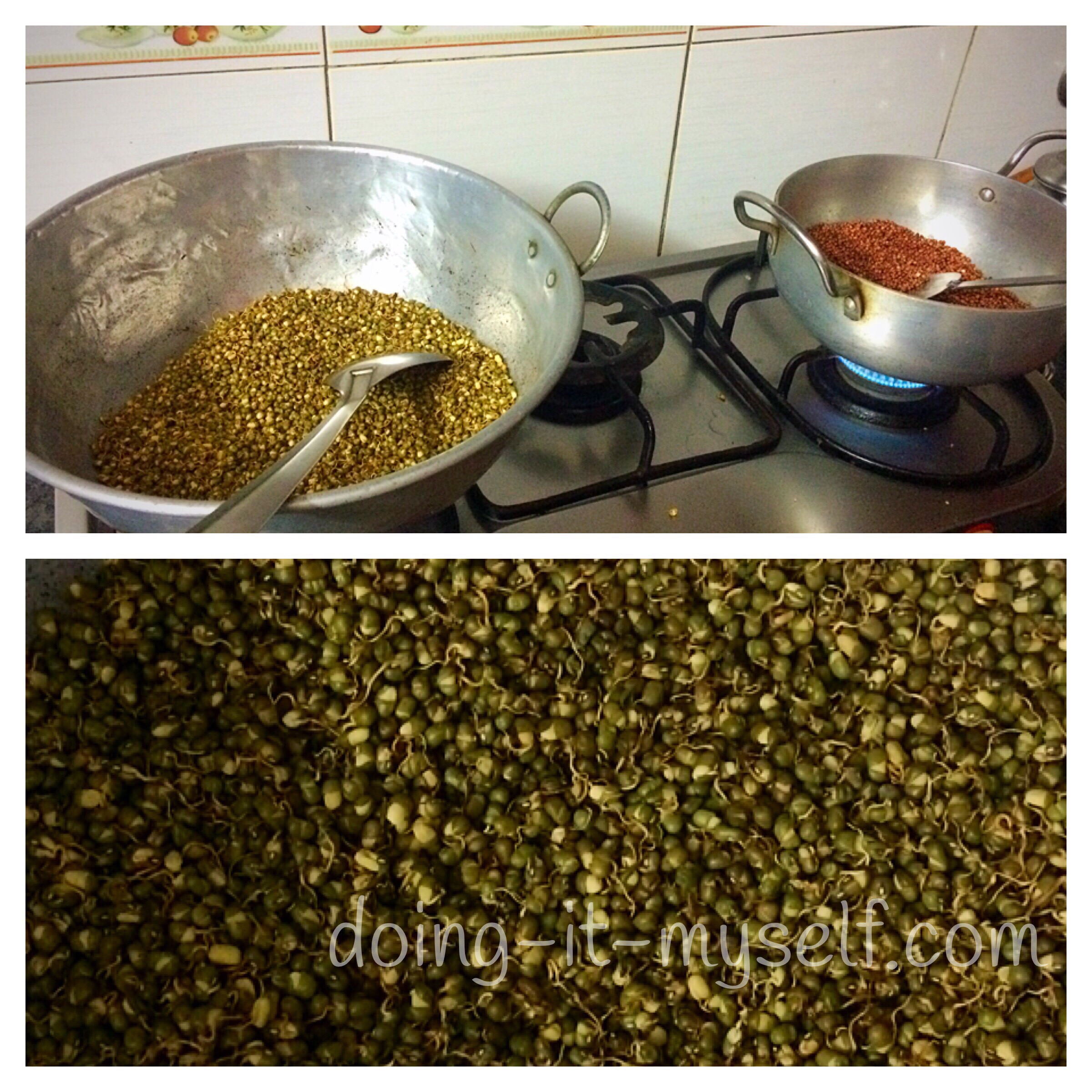 dry-fry-dried-sprouts